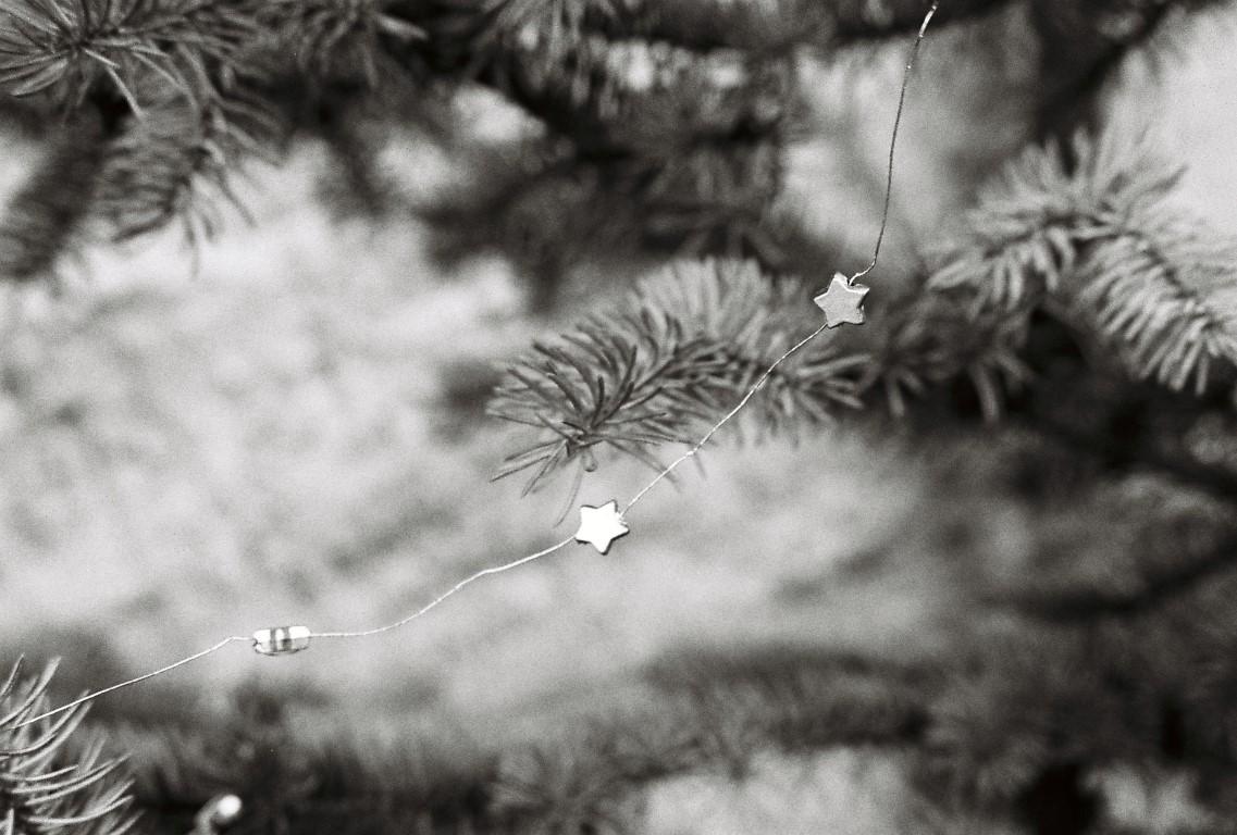 christbaum-weihnachtsbaum