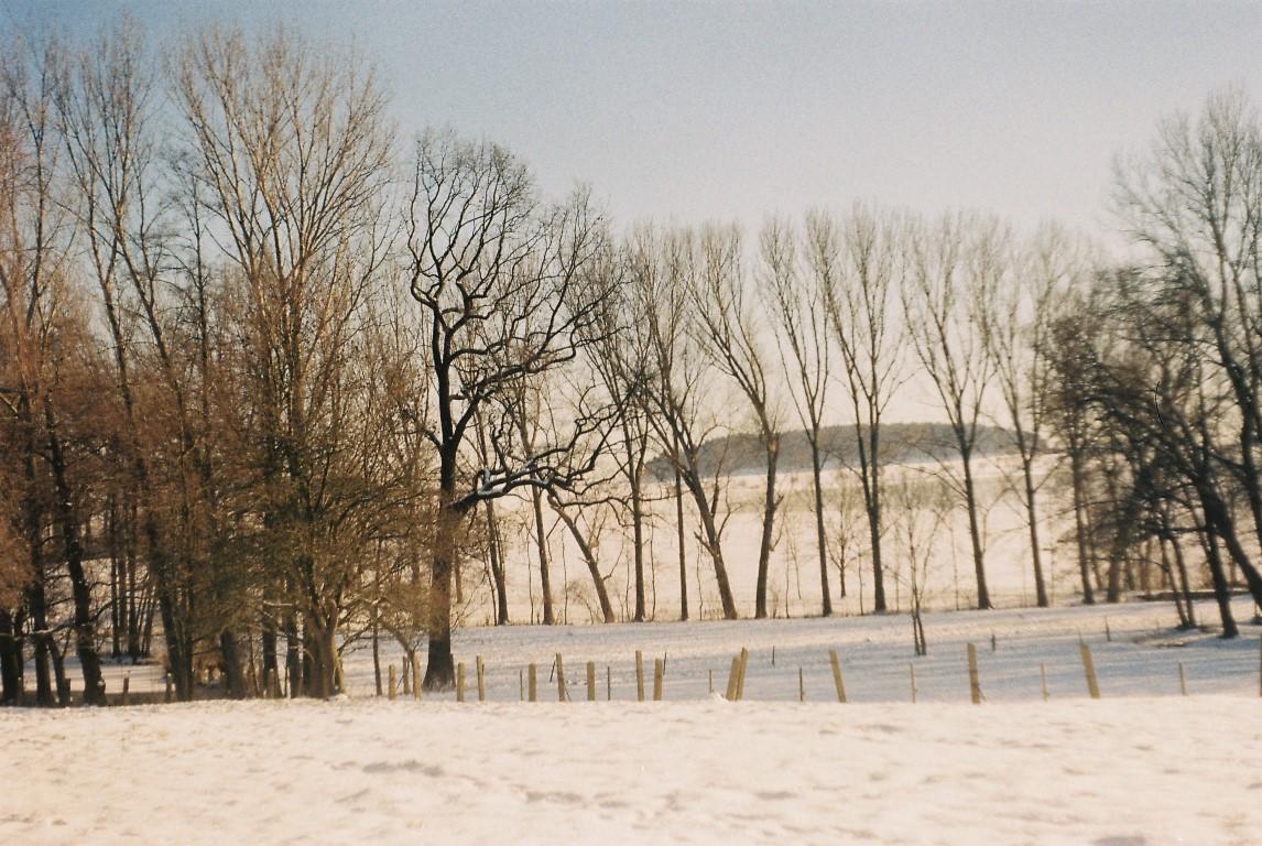 winterlandschaft-sachsen
