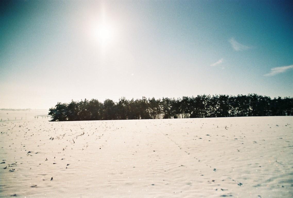 jan-19-sonnige-schneelandschaft