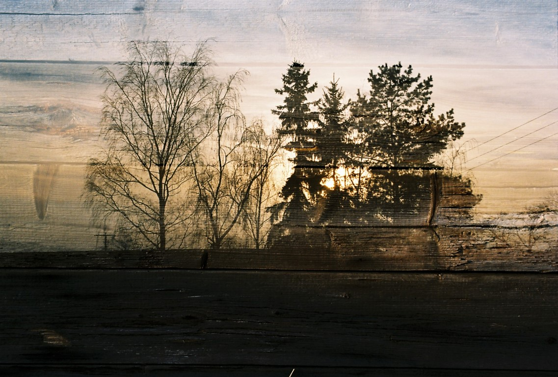 14 double exposure Kodak Ektar