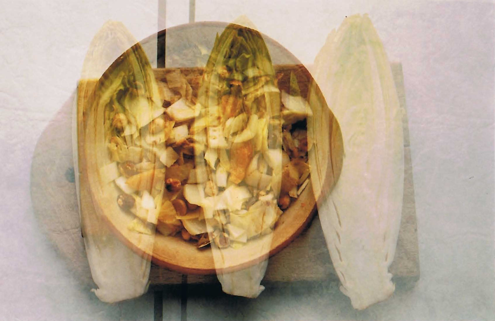21 doppelbelichtung chicoree salat