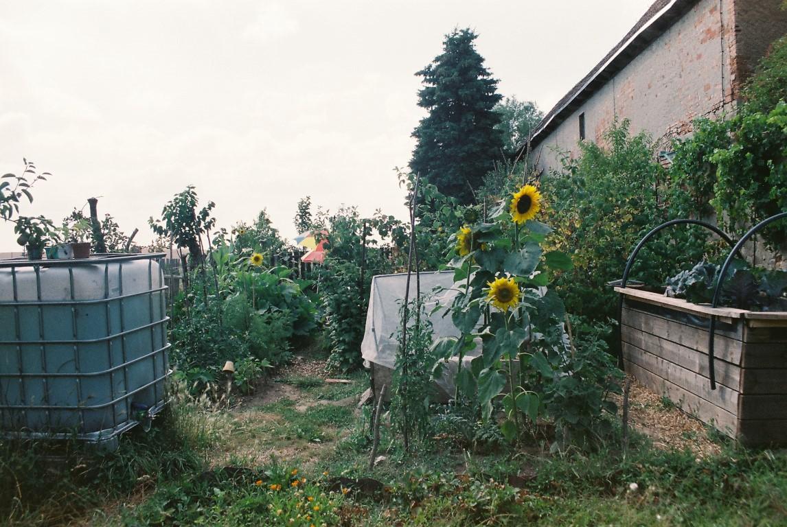 Garten mit Hochbeet
