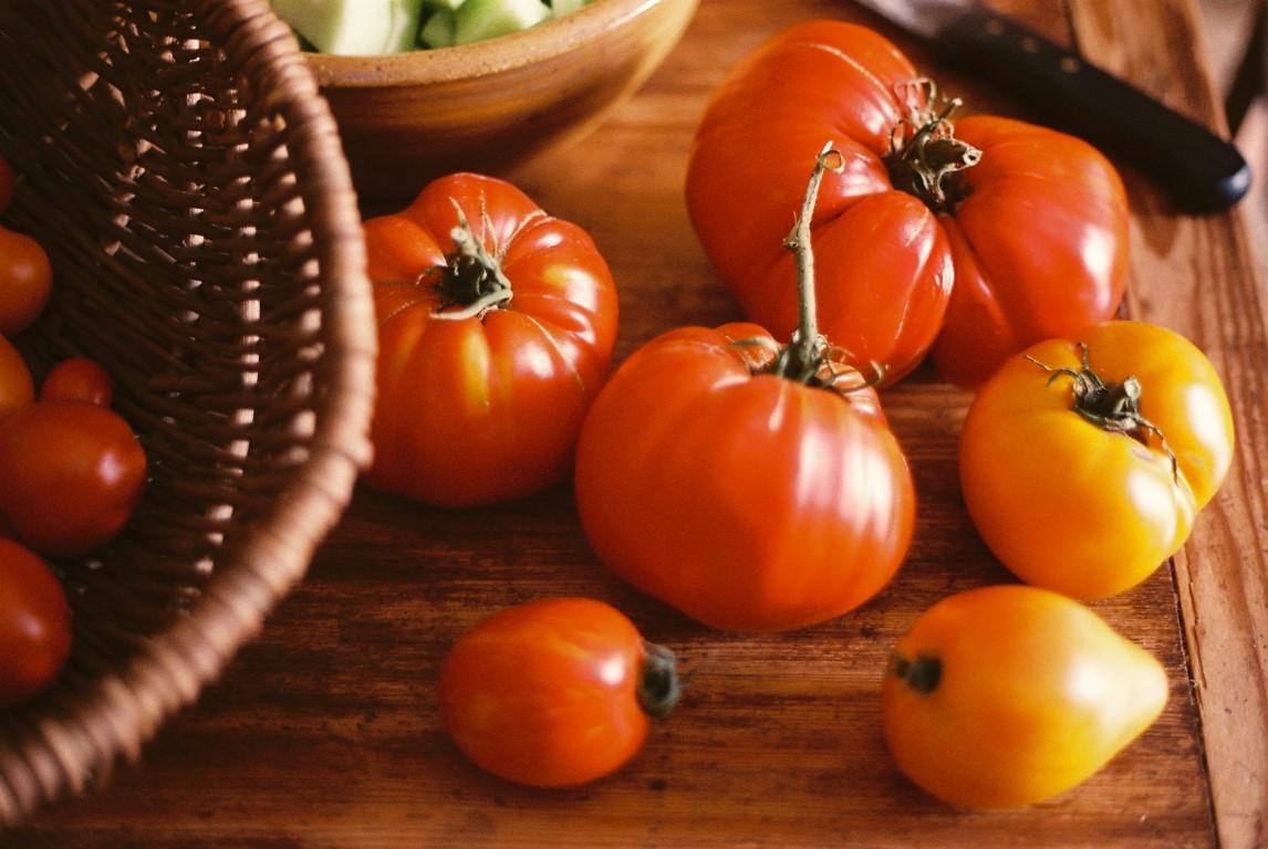 Tomaten samenfest Vielfalt I