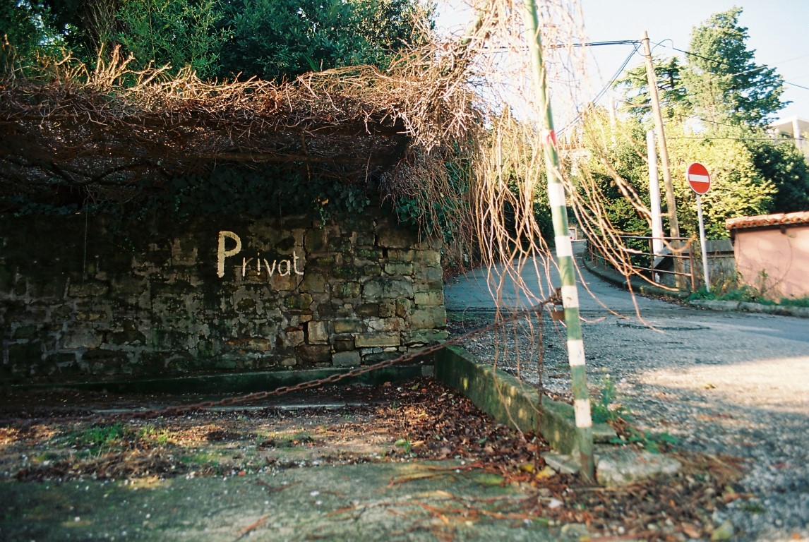 2019 Piran Privat typography