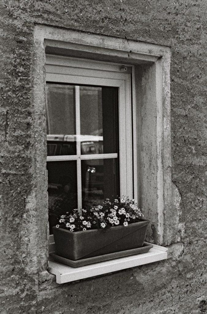 Hof Fenster