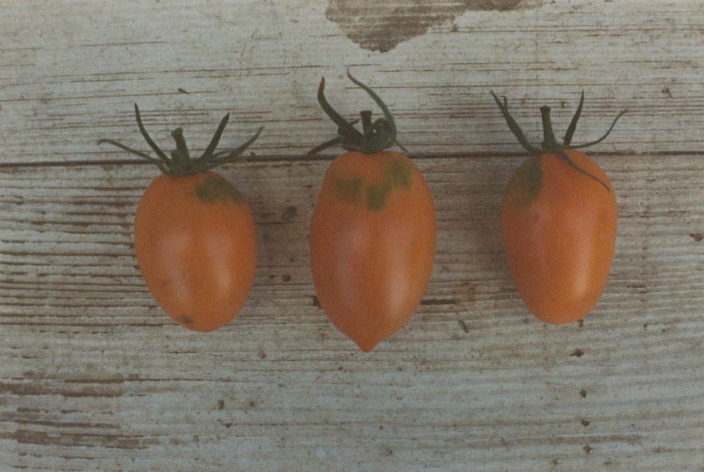 Tomatensorte orange banana